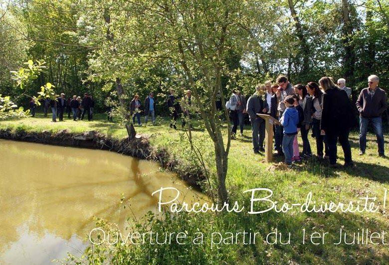Parcours Biodiversité des Caves de Rauzan